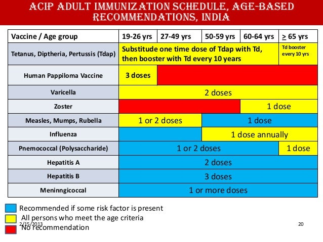 ... 20. ACIP Adult Immunization ...