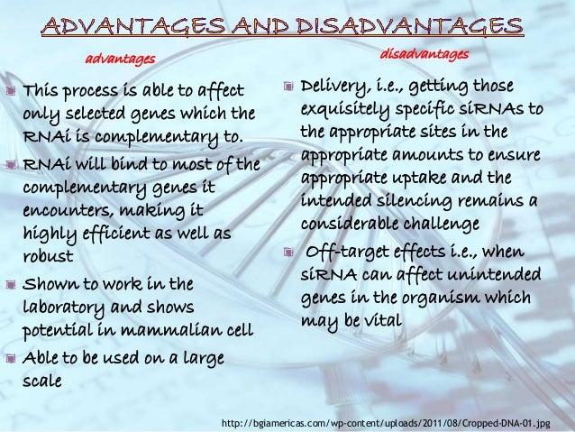 Advantages of shagging