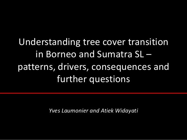 Understanding tree cover transition    in Borneo and Sumatra SL –patterns, drivers, consequences and          further ques...