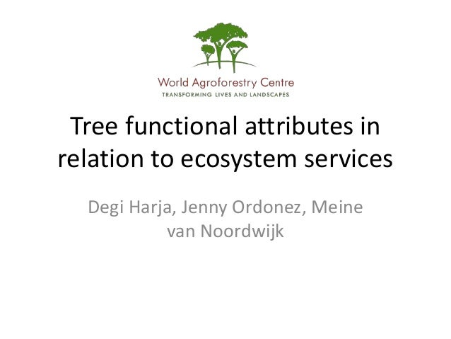Tree functional attributes inrelation to ecosystem services  Degi Harja, Jenny Ordonez, Meine           van Noordwijk