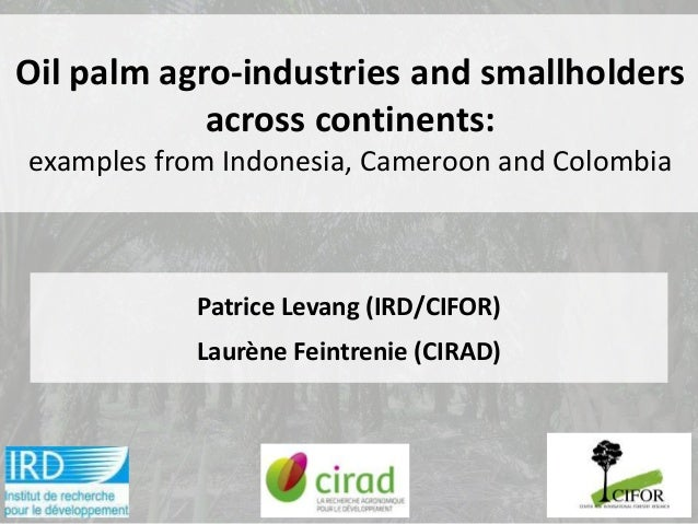 Oil palm agro-industries and smallholders            across continents:examples from Indonesia, Cameroon and Colombia     ...