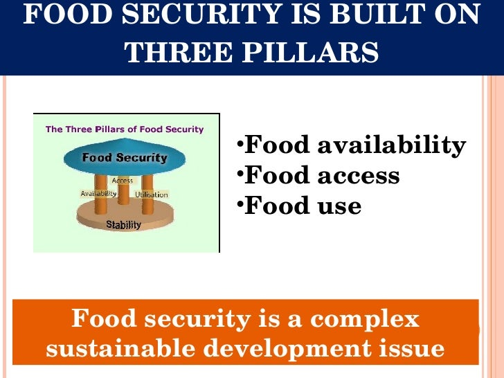 food security bill essay