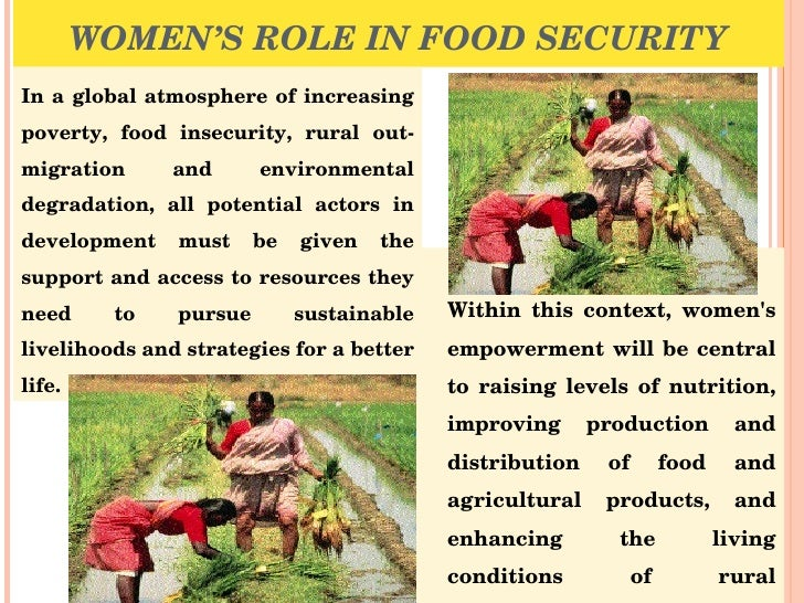 essay on food security in food security in essay sample essay for upsc mains exam by food security in essay