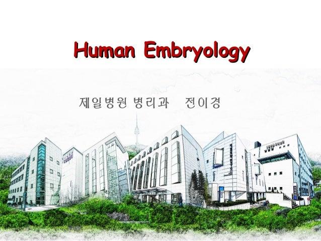 Human EmbryologyHuman Embryology 제일병원 병리과 전이경