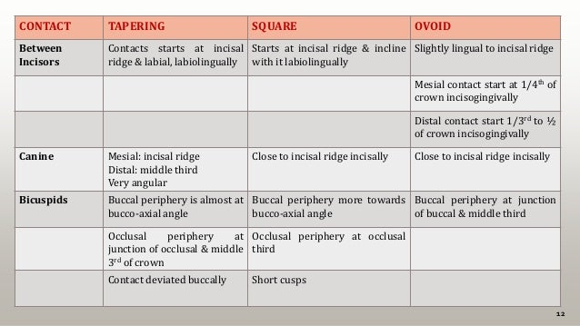 12 CONTACT TAPERING SQUARE OVOID Between Incisors Contacts starts at incisal ridge & labial, labiolingually Starts at inci...