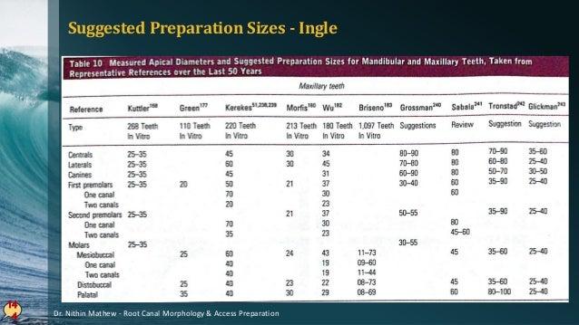 14 5 Dr. Nithin Mathew - Root Canal Morphology & Access Preparation