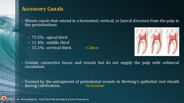 Lateral Canals • An accessory canal that branches to the lateral surface of the root. • Opening of accessory and lateral c...