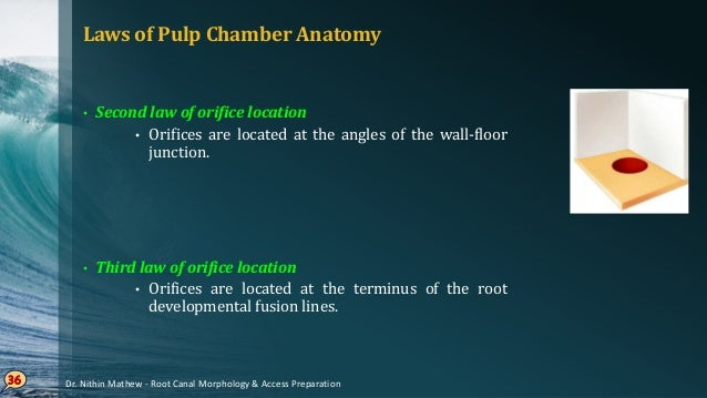 Laws of Pulp Chamber Anatomy • Law of CEJ • Distance from external surface of clinical crown to the wall of pulp chamber i...
