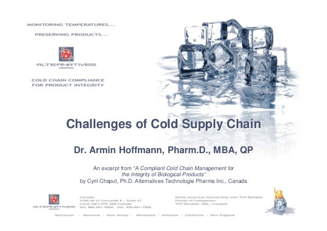 challenges in supply chain management pdf