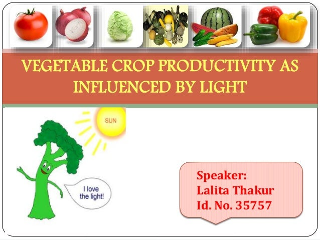 VEGETABLE CROP PRODUCTIVITY AS INFLUENCED BY LIGHT  Speaker: Lalita Thakur Id. No. 35757