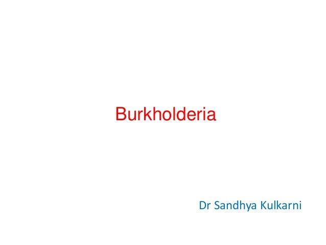 Burkholderia  Dr Sandhya Kulkarni