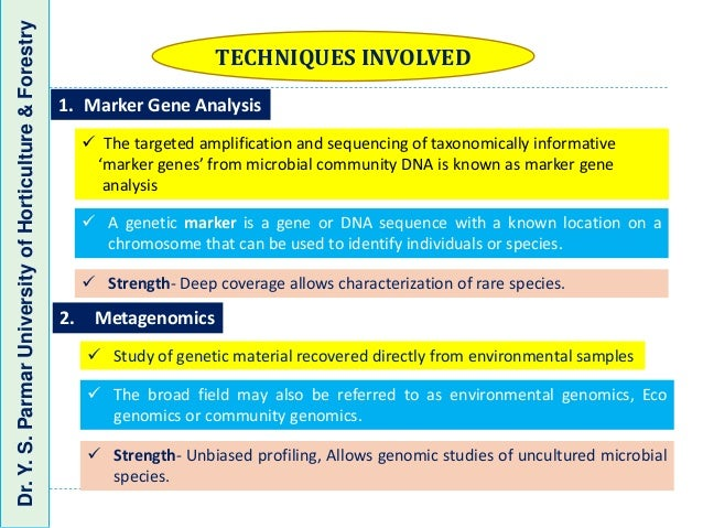 Targeted Individuals Dna