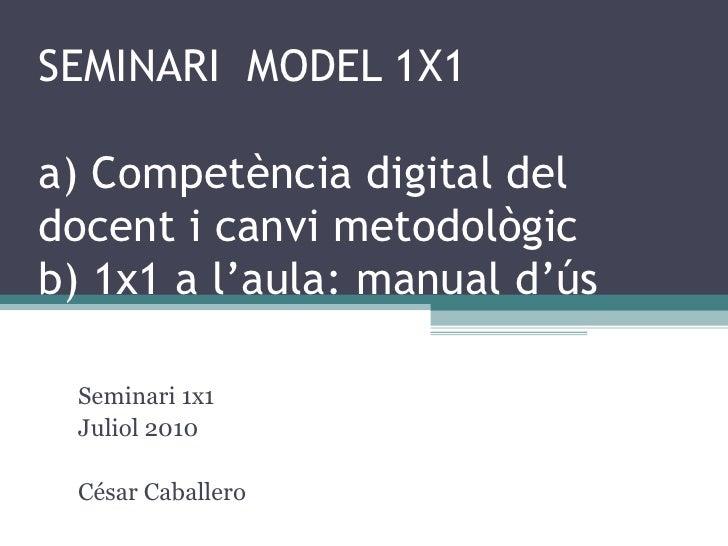 SEMINARI  MODEL 1X1. SESSIÓ 1  Seminari 1x1 Juliol 2010 César Caballero [email_address] <ul><li>Competència digital del do...