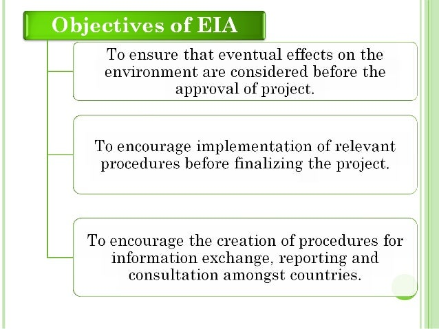 Environmental Impact Assessment - Essay Example