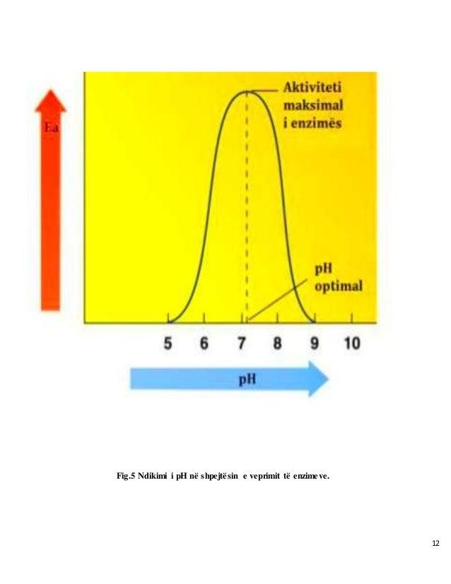 12 Fig.5 Ndikimi i pH në shpejtësin e veprimit të enzimeve.