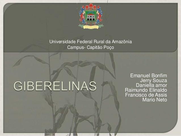 Emanuel Bonfim  Jerry Souza  Daniella amor  Raimundo Elinaldo  Francisco de Assis  Mario Neto  Universidade Federal Rural ...
