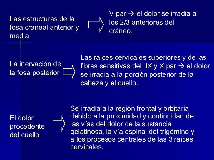 La inervación de la fosa posterior Las raíces cervicales superiores y de las fibras sensitivas del  IX y X par    el dolo...