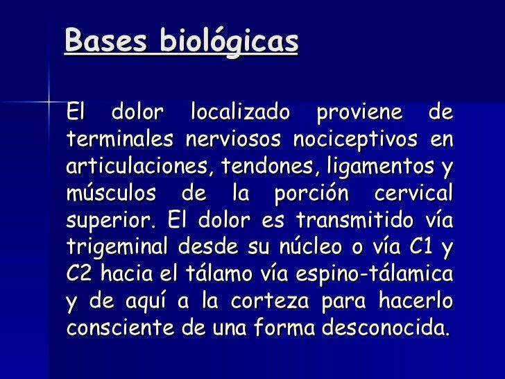 Bases biológicas <ul><li>El dolor localizado proviene de terminales nerviosos nociceptivos en articulaciones, tendones, li...