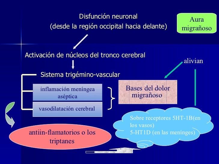 <ul><li>Disfunción neuronal  </li></ul><ul><li>(desde la región occipital hacia delante)  </li></ul><ul><li>Activación de ...