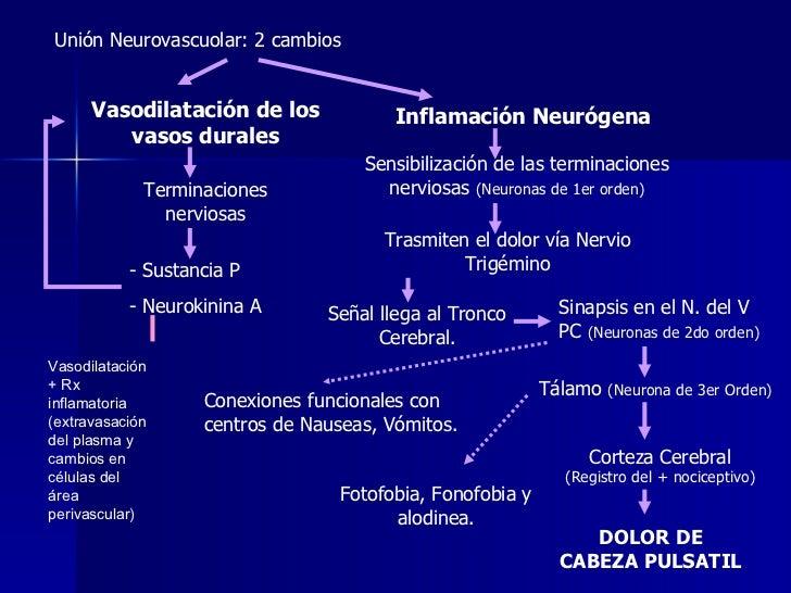 Inflamación Neurógena Unión Neurovascuolar: 2 cambios Vasodilatación de los vasos durales Terminaciones nerviosas <ul><li>...