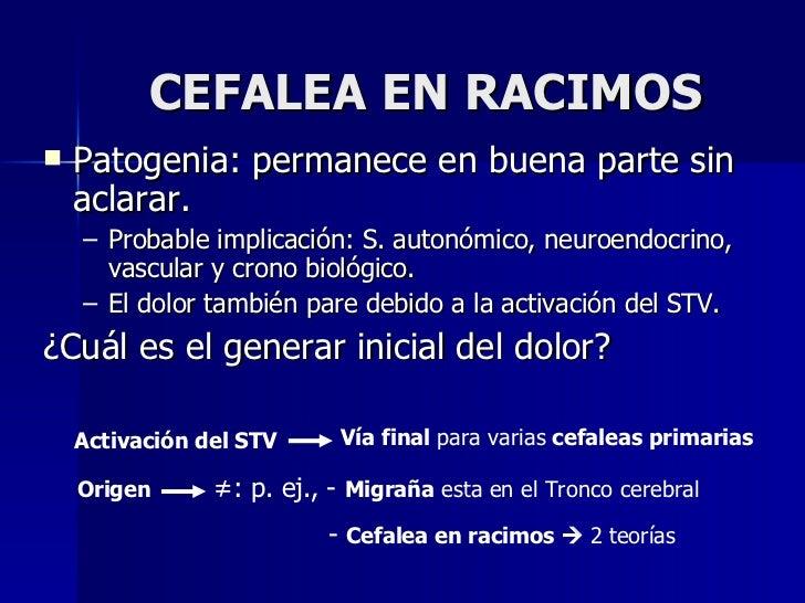 CEFALEA EN RACIMOS <ul><li>Patogenia: permanece en buena parte sin aclarar. </li></ul><ul><ul><li>Probable implicación: S....