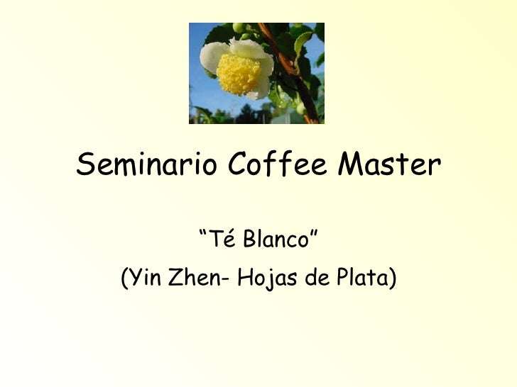 """Seminario Coffee Master """" Té Blanco"""" (Yin Zhen- Hojas de Plata)"""
