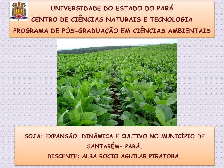 UNIVERSIDADE DO ESTADO DO PARÁ <br />CENTRO DE CIÊNCIAS NATURAIS E TECNOLOGIA <br />PROGRAMA DE PÓS-GRADUAÇÃO EM CIÊNCIAS ...