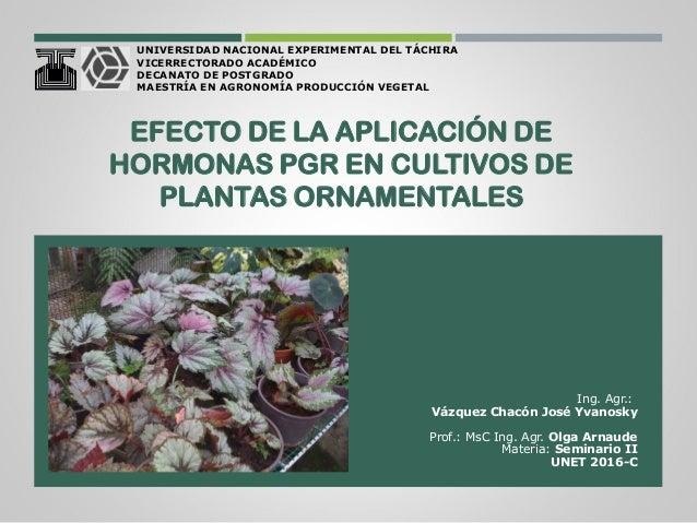 Efecto de la aplicaci n de hormonas pgr en cultivos de for Funcion de las plantas ornamentales