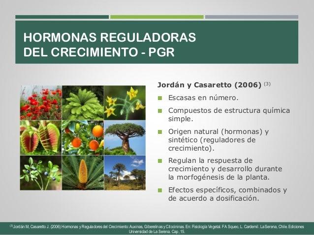 Efecto de la aplicaci n de hormonas pgr en cultivos de for Hormonas en las plantas
