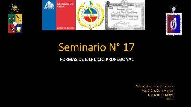 Seminario N° 17 FORMAS DE EJERCICIO PROFESIONAL Sebastián Colilaf Espinoza Roció Díaz San Martin Dra Milena Moya 2015.