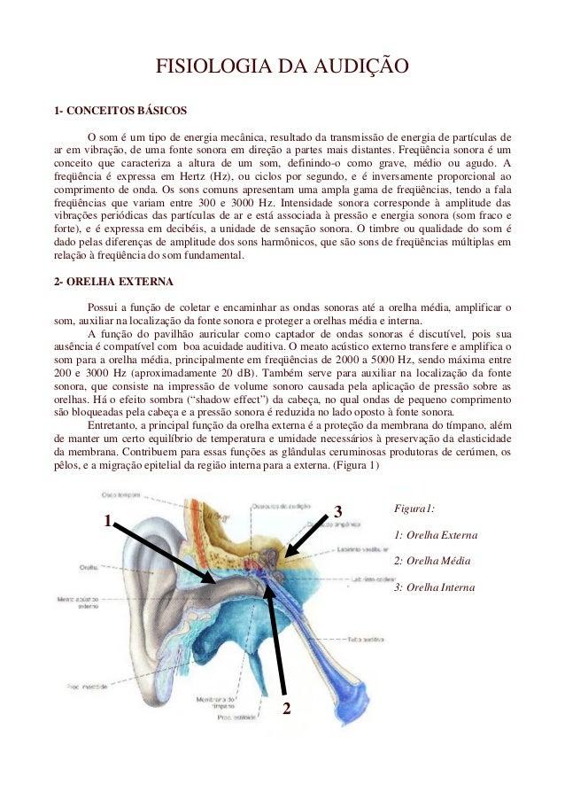 FISIOLOGIA DA AUDIÇÃO 1- CONCEITOS BÁSICOS O som é um tipo de energia mecânica, resultado da transmissão de energia de par...