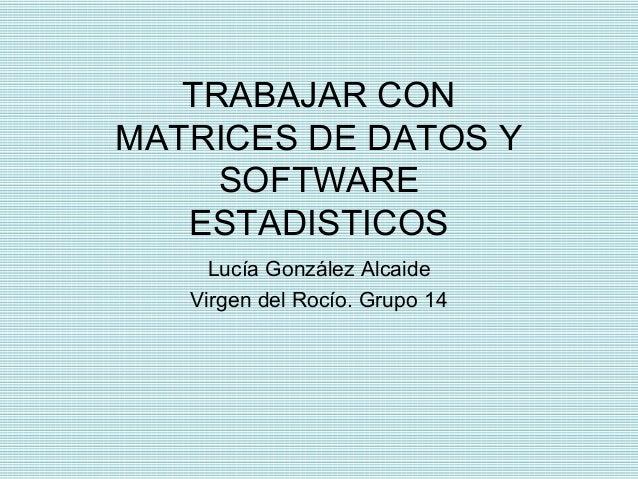 TRABAJAR CON MATRICES DE DATOS Y SOFTWARE ESTADISTICOS Lucía González Alcaide Virgen del Rocío. Grupo 14
