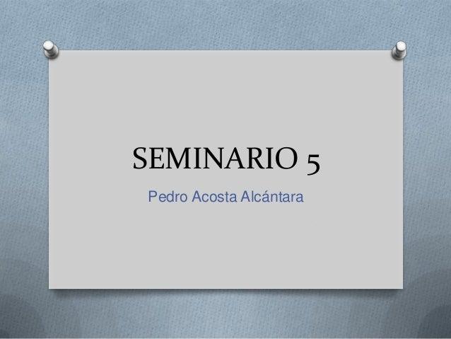 SEMINARIO 5Pedro Acosta Alcántara