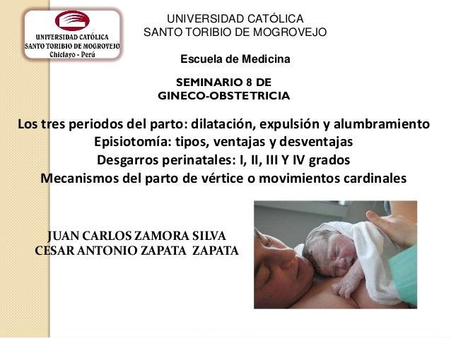 Los tres periodos del parto: dilatación, expulsión y alumbramientoEpisiotomía: tipos, ventajas y desventajasDesgarros peri...