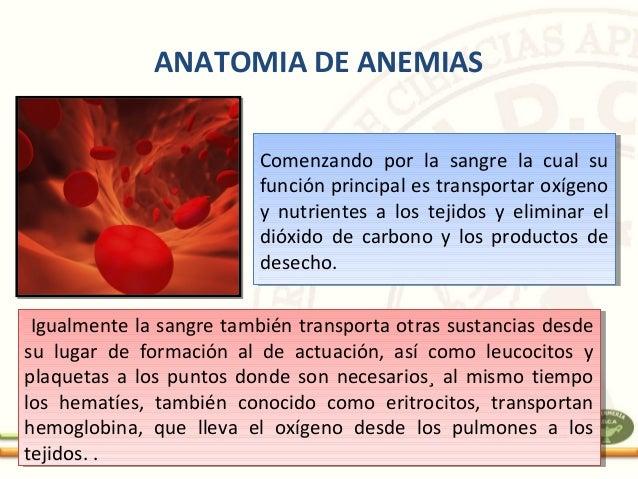 Seminario aleman anemias. final