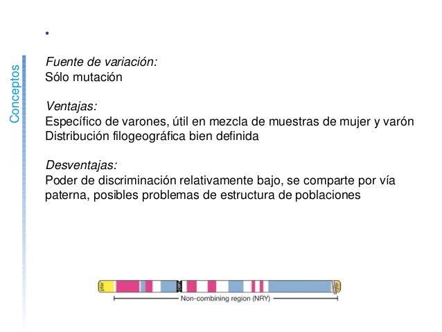 Conceptos •STRscrY Fuentedevariación: Sólomutación Ventajas: Específicodevarones,útilenmezclademuestrasde...