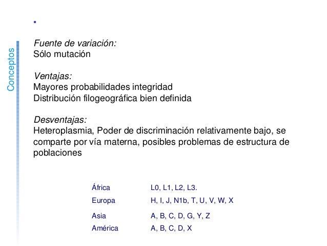 Conceptos •SNPsdelADNmitocondrial Fuentedevariación: Sólomutación Ventajas: Mayoresprobabilidadesintegridad ...