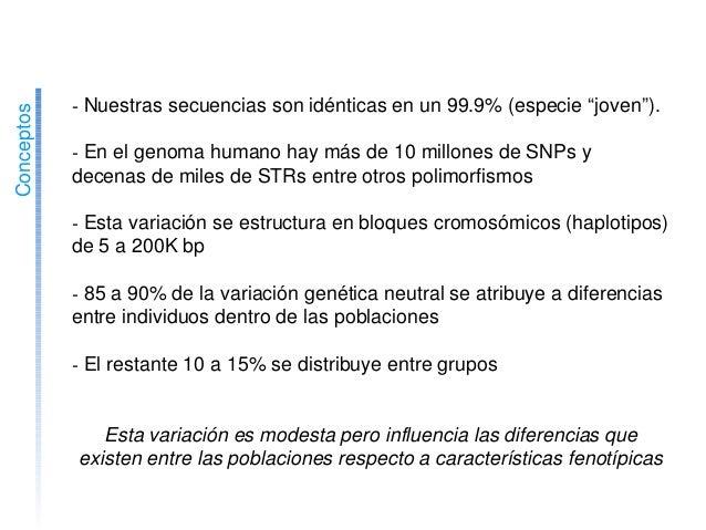 """Variaciónenelgenomahumano Conceptos Nuestrassecuenciassonidénticasenun99.9%(especie""""joven""""). Enelg..."""