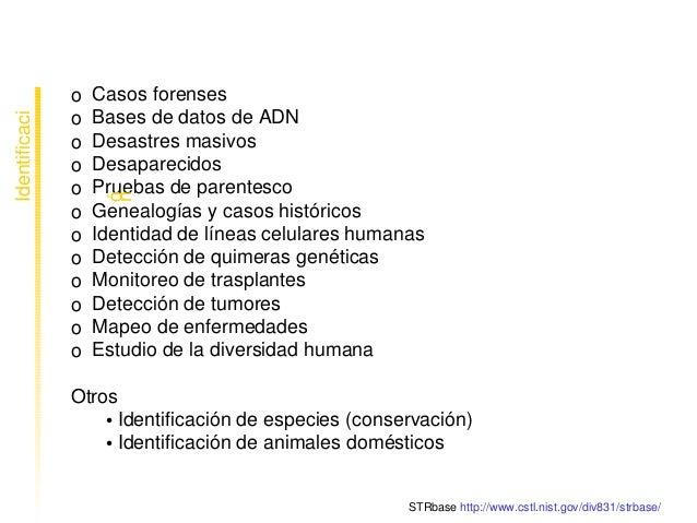 Aplicacionesdelgenotipadoparaidentificación oCasosforenses oBasesdedatosdeADN oDesastresmasivos oDes...