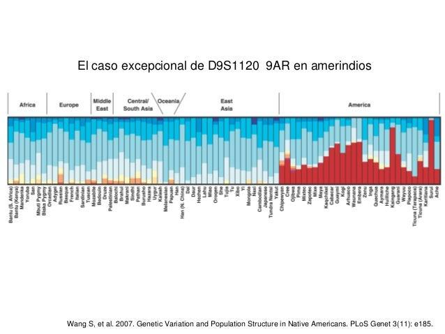 ElcasoexcepcionaldeD9S11209ARenamerindios WangS,etal.2007.GeneticVariationandPopulationStructureinN...