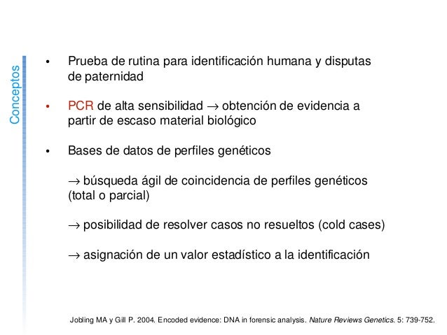 ElADNcomoevidencia • Pruebaderutinaparaidentificaciónhumanaydisputas depaternidad • PCRdealtasensibili...