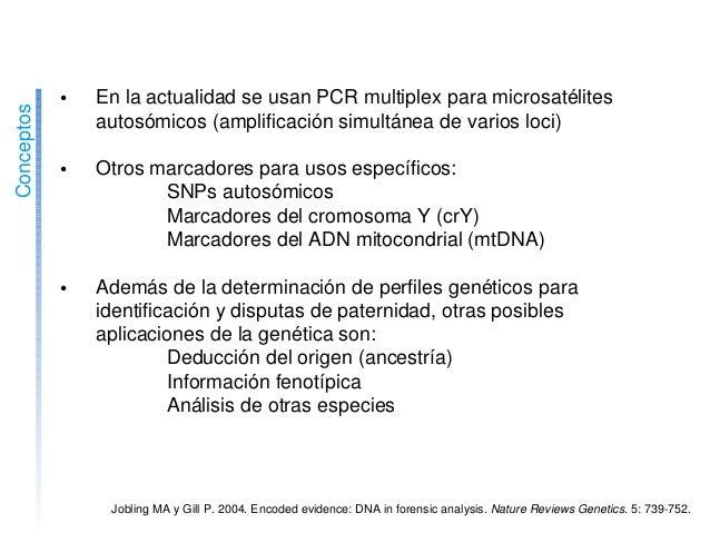 • EnlaactualidadseusanPCRmultiplexparamicrosatélites autosómicos(amplificaciónsimultáneadevariosloci) •...