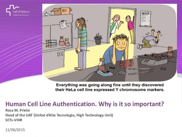 concepte destacat Human Cell Line Authentication. Why is it so important? Rosa M. Prieto Head of the UAT (Unitat d'Alta Te...