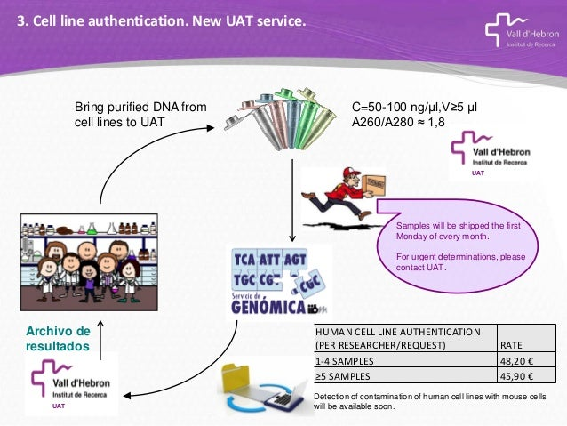 Human Cell Line Authentication. Why is it so important?