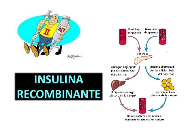 Proteinas recombinantes, Insulina recombinante