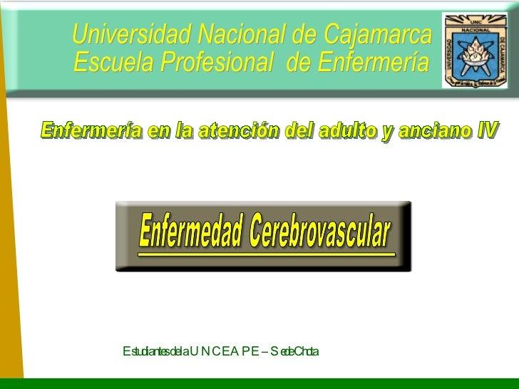 Universidad Nacional de Cajamarca Escuela Profesional  de Enfermería Enfermería en la atención del adulto y anciano IV Est...