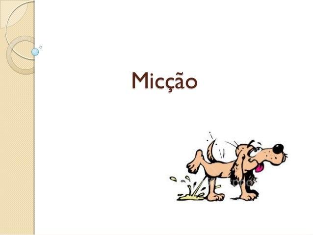 Micção