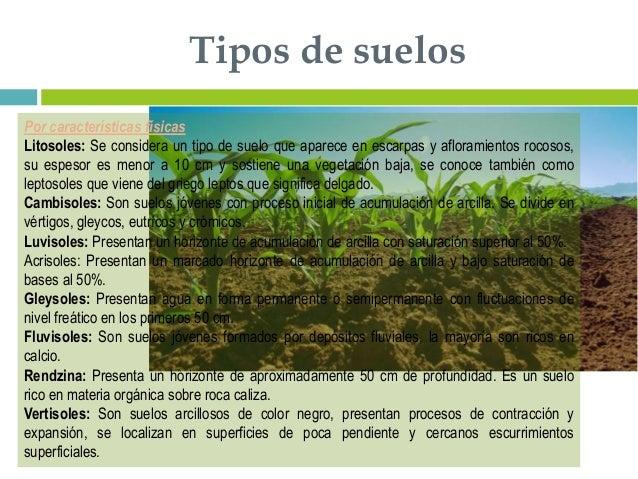 Suelos y plantas - Tipos de suelos ...