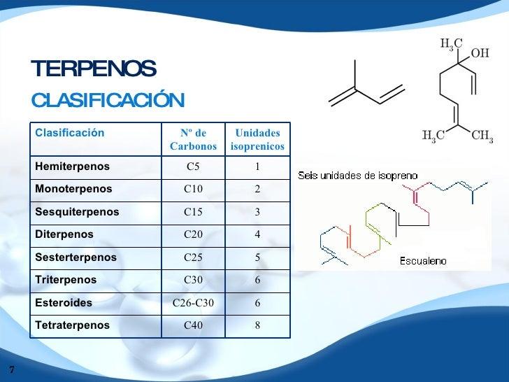extraccion de saponinas esteroidales