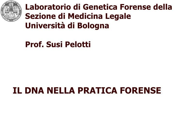 Laboratorio di Genetica Forense della Sezione di Medicina Legale  Università di Bologna Prof. Susi Pelotti logo IL DNA NEL...